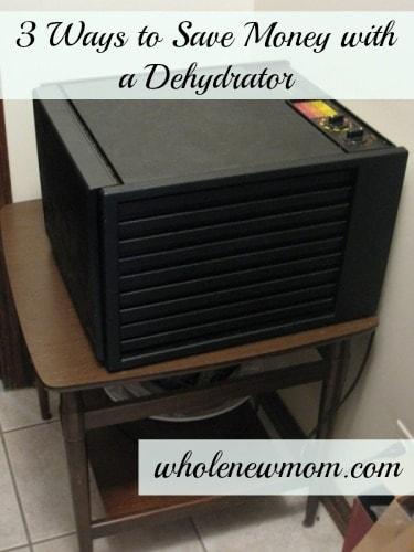 Dehydrator Save Money Wmk