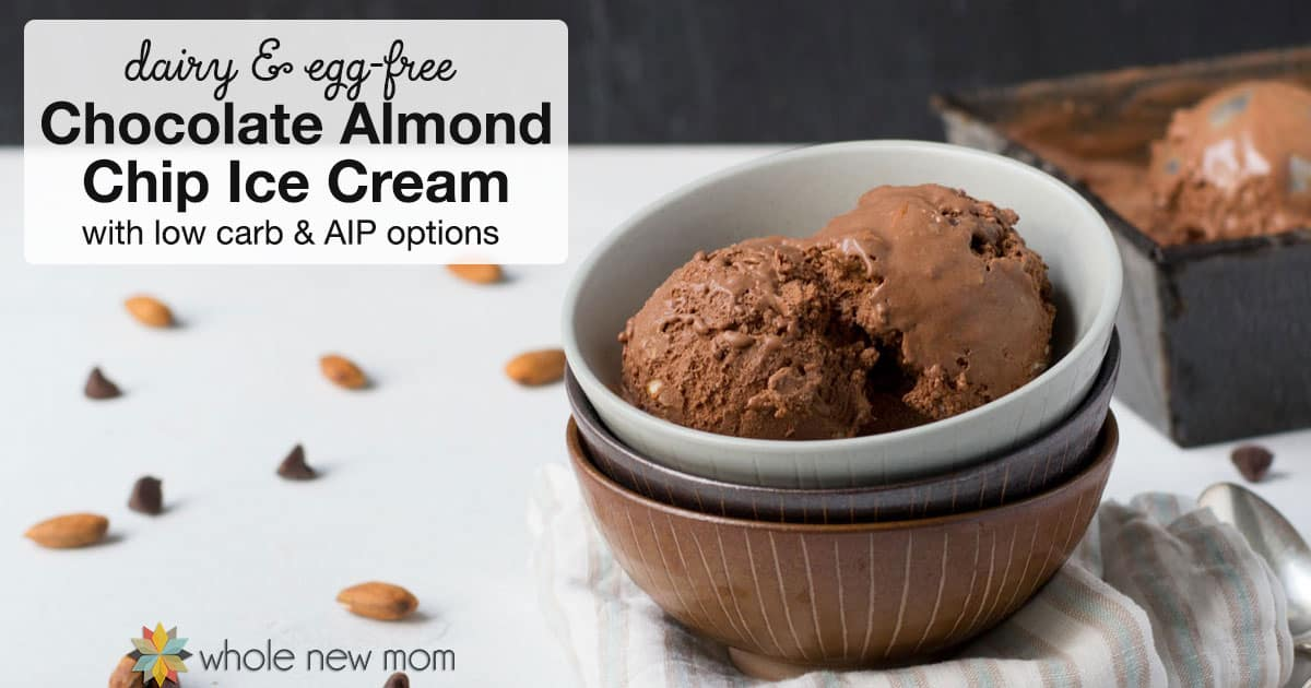 Chocolate Almond Chip Ice Cream in a bowl