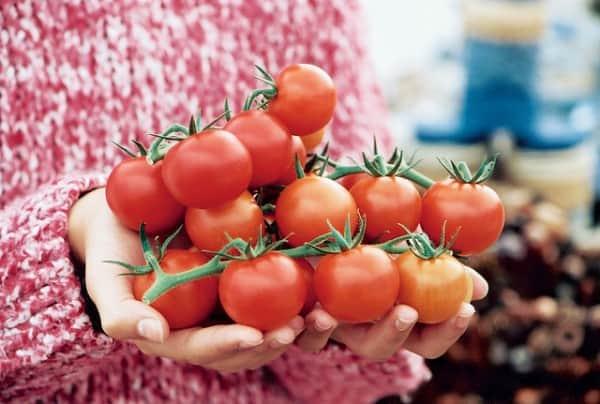 Health Food | Whole Food