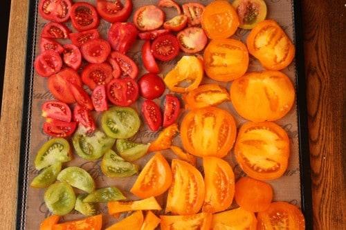 Drying Tomatoes Dehydrator