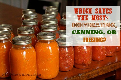 Which Saves The Most Money Dehydrating Freezing Or Canning