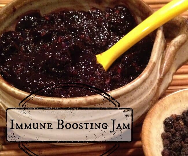Ditch the Germs with this Immune Boosting Sugar-Free Elderberry Jam! https://wholenewmom.com/recipes/keep-germs-at-bay-with-delicious-immune-boosting-jam/