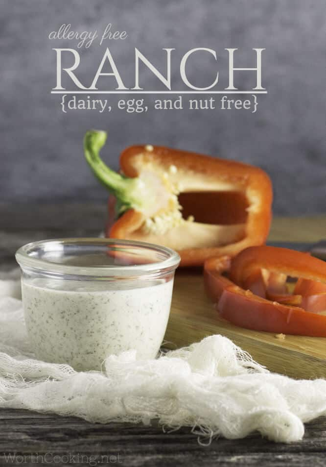 Love Ranch Dressing, but you've got food allergies? This Homemade Ranch Dressing Recipe is not only dairy free, but it's also egg free and nut free too. Great as a dip, dressing, or spread for sandwiches and wraps. #paleo #vegan #dairyfree