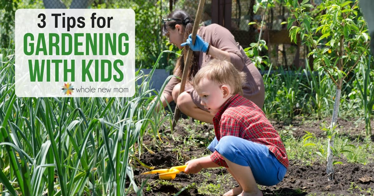 Growing things is a great activity to do as a family. Learn 3 Tips for Gardening with Kids from an expert gardener and get growing!